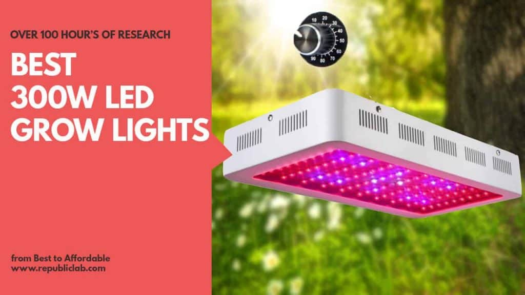 Best 300 watt led grow lights for plants